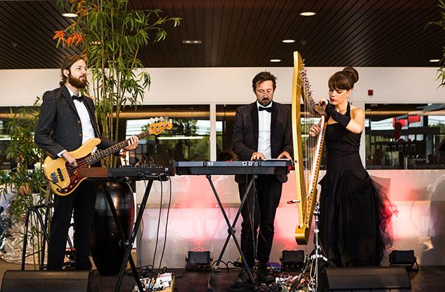 Trio-Musicien-harpiste-MMichele