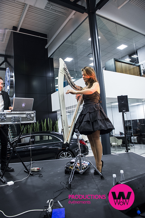 MMichele-duo-harpiste-electrique